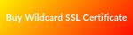Buy_Wildcard_SSL_Certificate